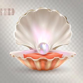 3d открытая оболочка с блестящей жемчужиной внутри.
