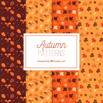4 different patterns for autumn