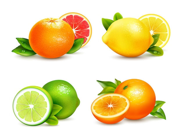 Цитрусовые фрукты 4 реалистичные иконки набор
