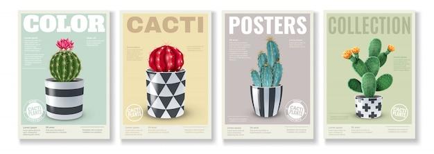 Цветущие сорта кактусов 4 реалистичных мини-постера с популярными комнатными растениями в декоративных горшках