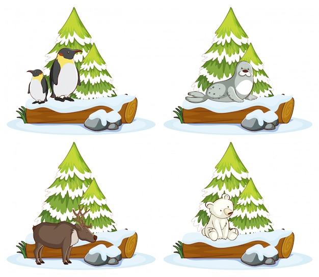 さまざまな動物の4つのシーン