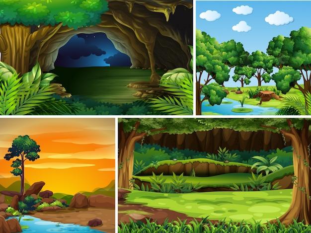 異なる時間帯の4つの森の風景