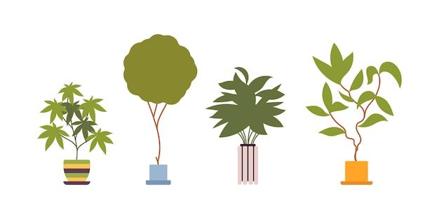 レトロなポットで4つの緑の床植物のセット