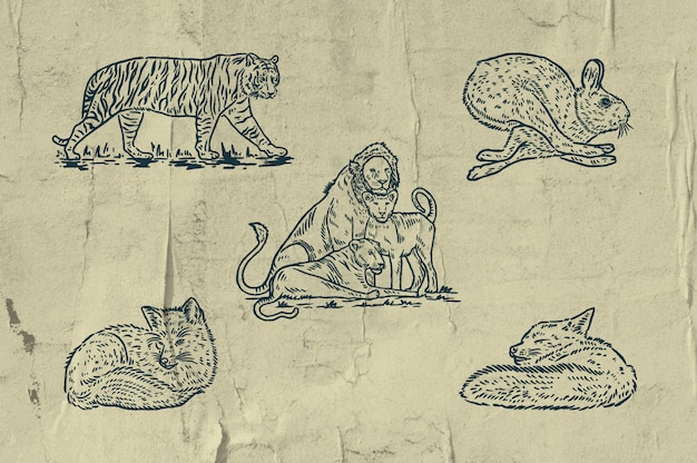 5 mamalias illustration - tiger - lion families - fastest rabbit - lazy fox