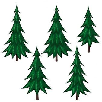 5 pine trees