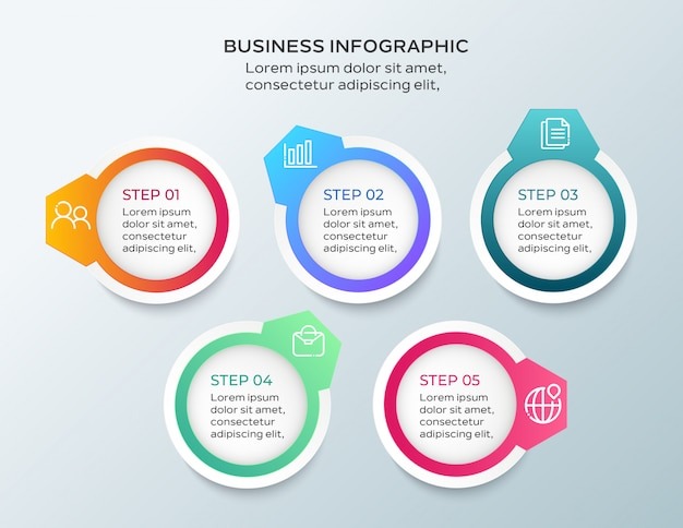 5 steps business infographic