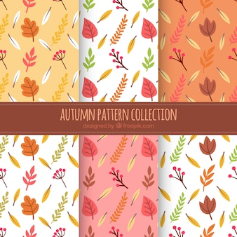 6 patterns with autumn leaves