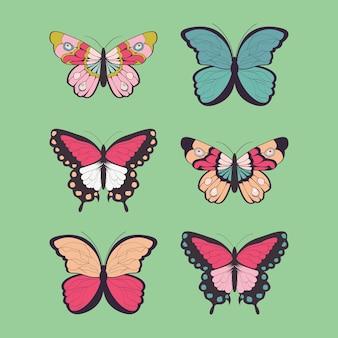 6つの手のコレクションは、カラフルな蝶を描いた