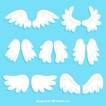 7組の翼のパック
