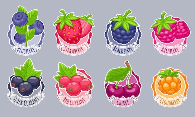 Ассорти из ягод наклейки набор векторные иллюстрации.