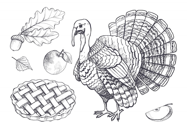 Птица индейки и запеченный пирог яблочный набор иконок вектор