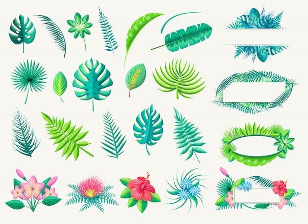 熱帯の葉とエキゾチックな花のベクトルコレクション白