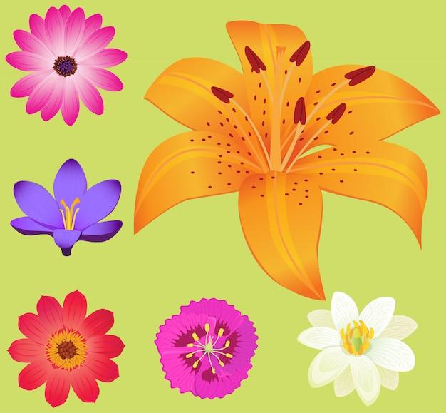 小さな花と黄色いユリの花