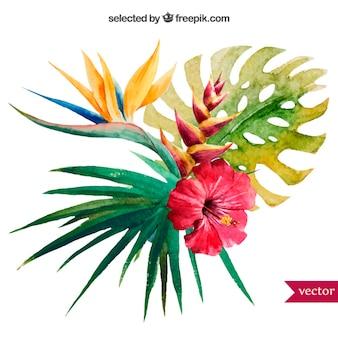 水彩熱帯植物