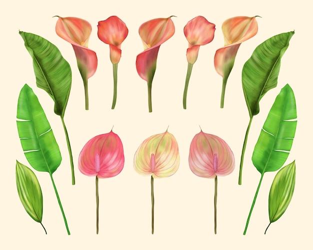 Тропические цветы и листья. калла лилии и антуриум