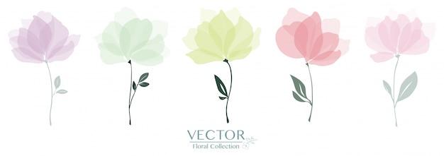 かわいい花のコレクションのセット