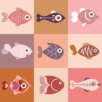 魚のコレクション