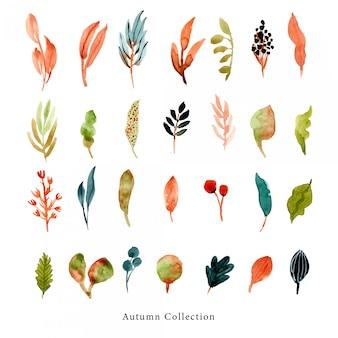 秋の葉と枝の水彩コレクション