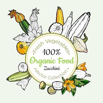 ズッキーニ野菜食料品ビンテージベクトルステッカー、ポスター、ラベル・テンプレート。流行に敏感な生鮮食品ライン手描きイラスト。