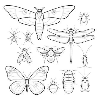 ベクトルの昆虫セット。