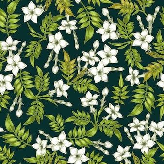 Вектор бесшовный цветочный узор с цветами жасмина.