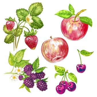 Вектор бесшовный цветочный узор с фруктами и ягодами.