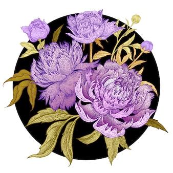 Букет красивых цветов пионов.