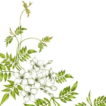 Бесшовный цветочный узор с цветами жасмина.
