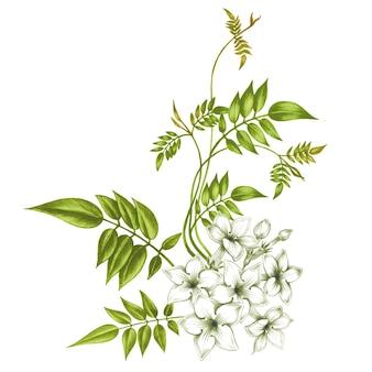 ジャスミンの花。