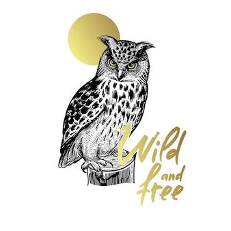 Лесная птица сова и надпись «дикий и свободный».
