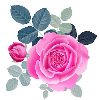 ピンクのバラの花束。