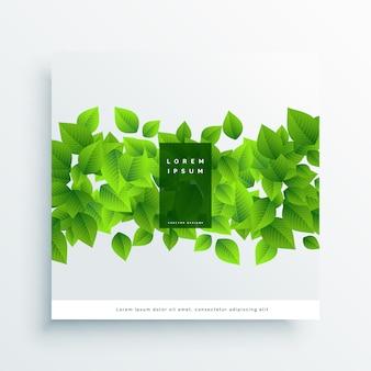 緑の葉カードカバーの背景