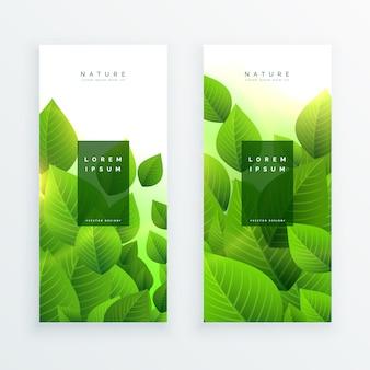 抽象的な緑の葉は、垂直のバナー