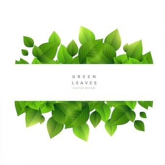 テキストスペースを持つスタイリッシュな緑の葉