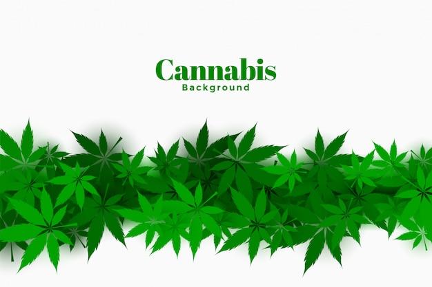 マリファナの葉のデザインとスタイリッシュな大麻の背景