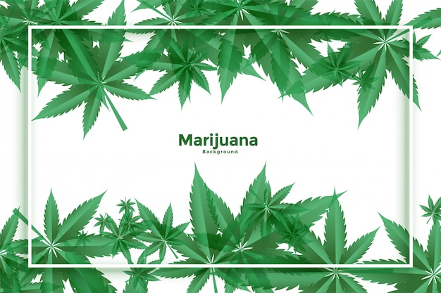 マリファナと大麻の緑の葉の背景デザイン
