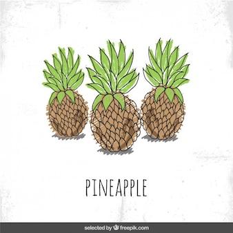 手描きパイナップル