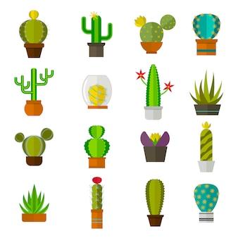 Симпатичные кактусы мультфильм коллекции плоский характер векторные иллюстрации.