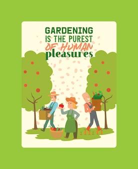 バスケットとボックスポスターベクトルイラストに野菜の収穫を選ぶ農家。土地から収穫する女性と男性のキャラクター。