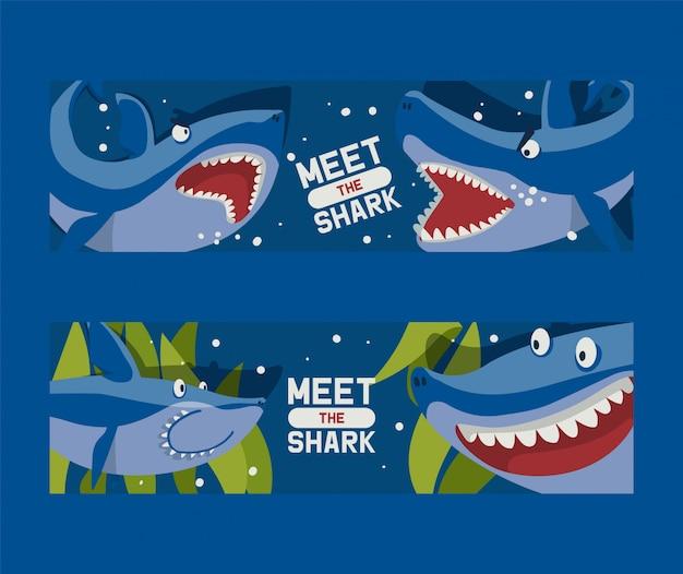 大きなサメのセットをご覧ください。