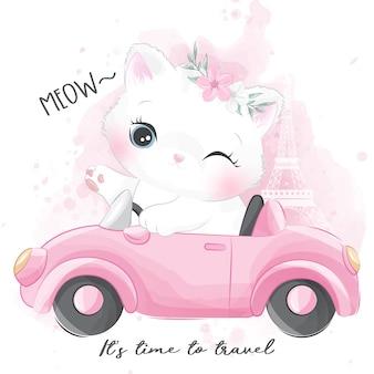 Милый маленький котенок катается на машине