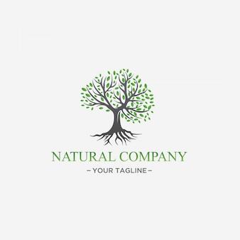 Зеленое дерево дизайн логотипа натуральный лист премиум вектор