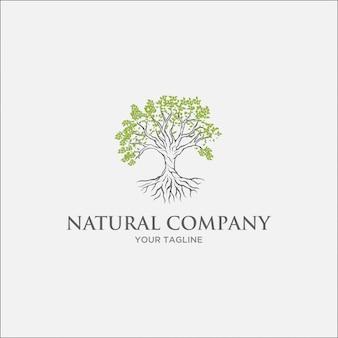 明るい緑の葉と灰色の枝と緑の木のロゴ