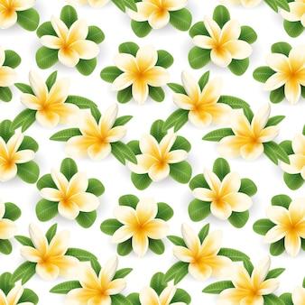 花プルメリアの花のシームレスパターン
