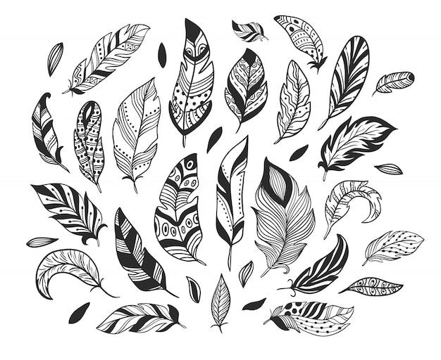 Ручной обращается перья. эскиз перо птицы, ретро художественный рисунок пером чернил и птицы, оперение изолированных набор