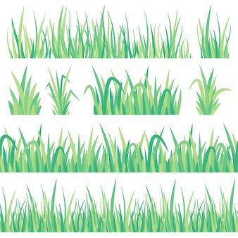 緑の草。フィールドハーブ、新鮮な庭の牧草地房芝と草のシームレスなバナー分離セット