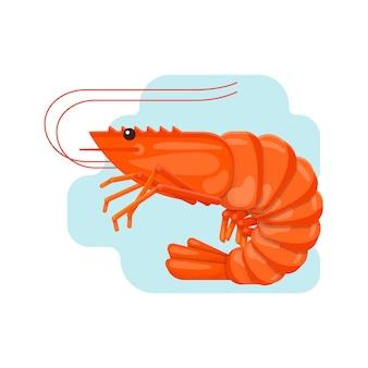 Креветка. векторные иллюстрации в плоский с текстурой зерна. мультипликационный персонаж.