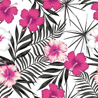 シームレスな黒の葉の上のピンクのハイビスカス