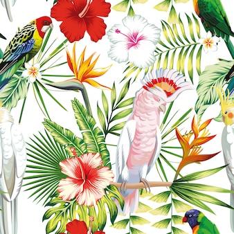 Бесшовные тропических экзотических многоцветных птиц попугай, ара с тропическими растениями, листья банановой пальмы, цветы стрелиция, гибискус