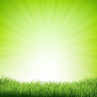 Летний плакат с рамкой из травы